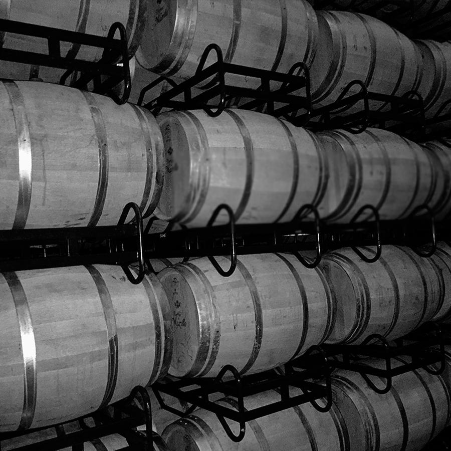 Bodegas San Esteban | Bodega DOCa Rioja